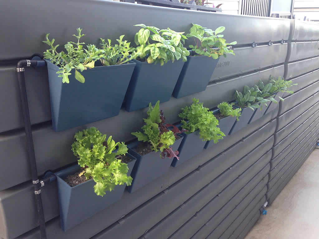 Captivating Thinpots Vertical Garden